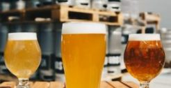 Beer and Craft Beer